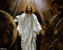 افراح القيامة