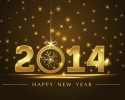 سنة جديدة