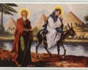 مصر فى الكتاب المقدس